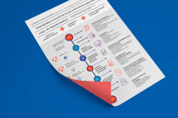 Visual Monkey/ Infographics / Service Design Process