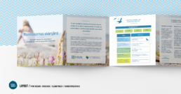 VisualMonkey / Print Design + infographics / Island Policy
